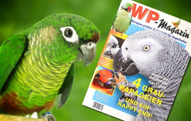WP Magazin März/ April 2015