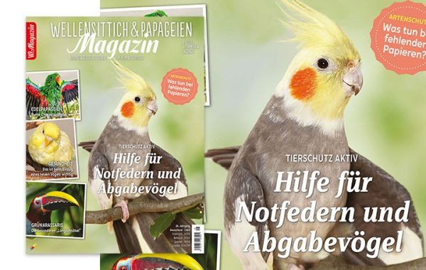WP Magazin 5/2020