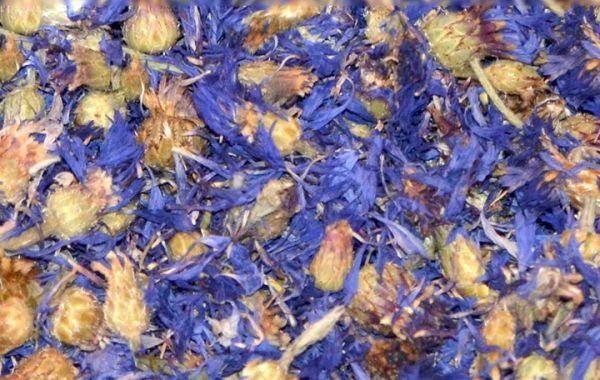 Kornblumenblüten, blau