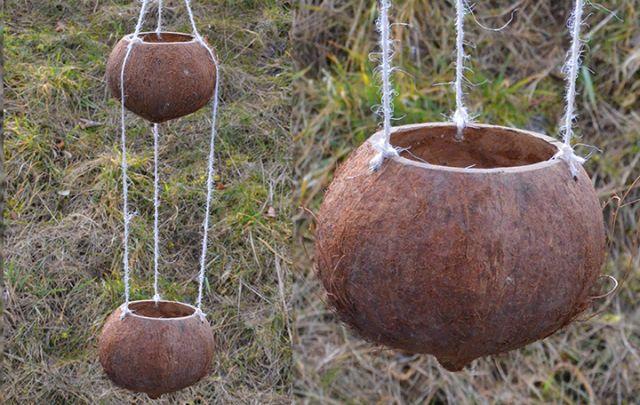 Kokos Doppel-Futterschale roh
