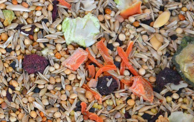 Mischung Gemüse Nymphensittiche