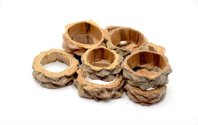 Kiefer Ringe 10 Stück 3-5cm