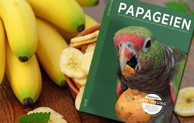 PAPAGEIEN-Sonderheft Ernährung