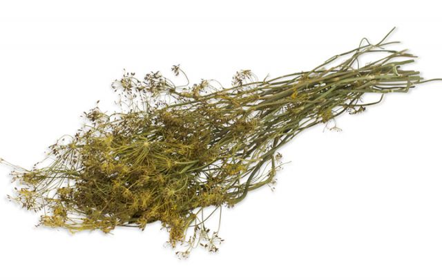 JR FARM Dill-Ernte 80g