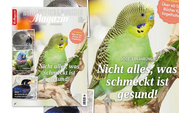 WP-Magazin 6-2020 November/ Dezember