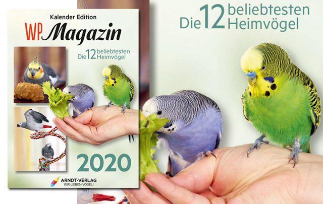 Kalender WP-Magazin 2020