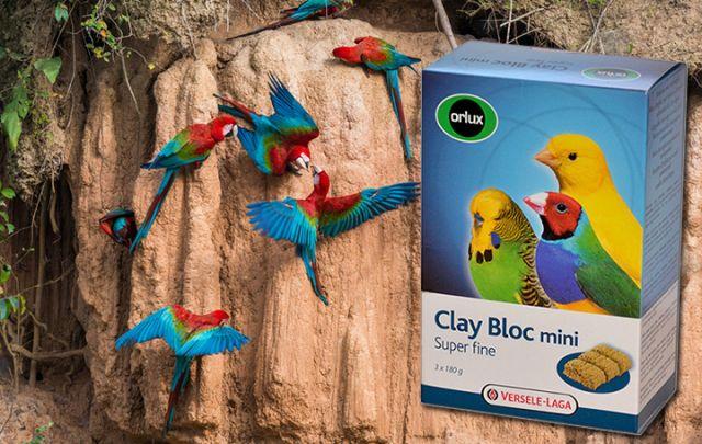 Clay Bloc Mini 540g