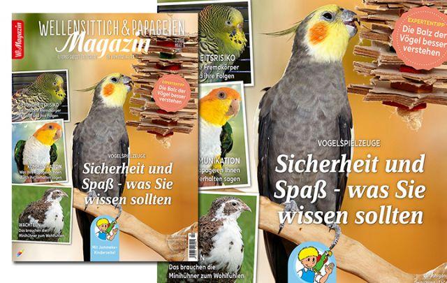 WP Magazin 2/2020
