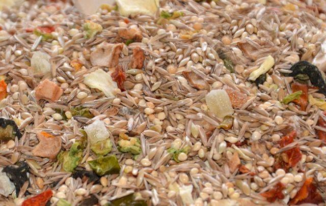 Körnerbude Wellensittich Diät Spezial - das Original -