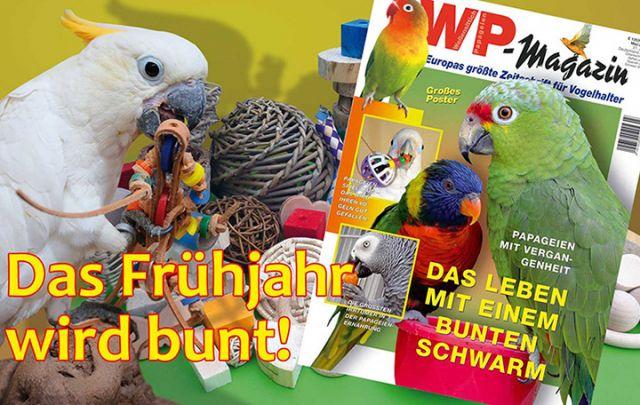 WP Magazin Mai/ Juni 2015