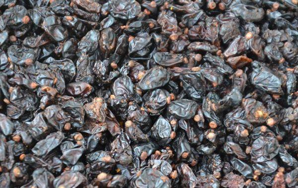 Berberitzenfrüchte, Sauerdorn