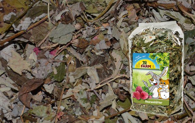 JR FARM Beeren-Blätter 100g
