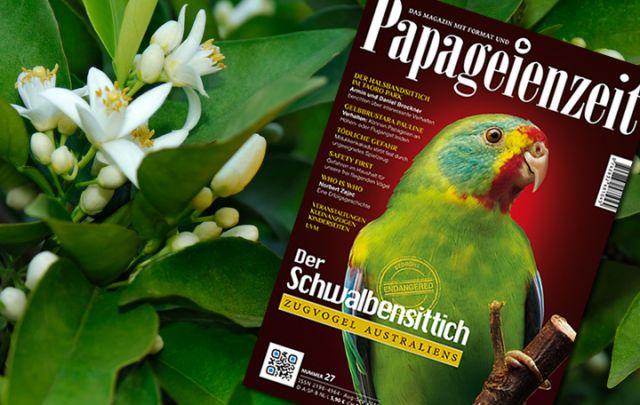 Papageienzeit Nr. 27 August/September 2016