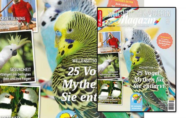 WP Magazin 2-2019