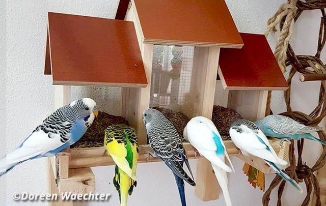 Birds Triple Bar BIG 51 x 28 x 40 cm