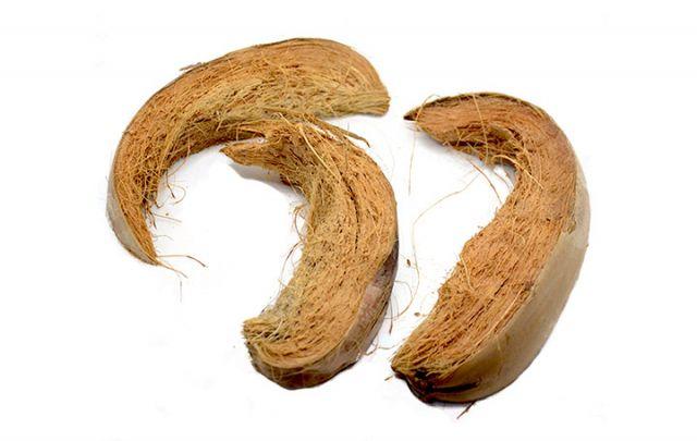 Kokosschale natur ca. 20-30cm 3 Stück