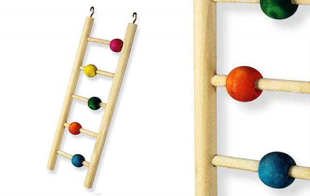Sittichleiter Counting Budgie Ladder